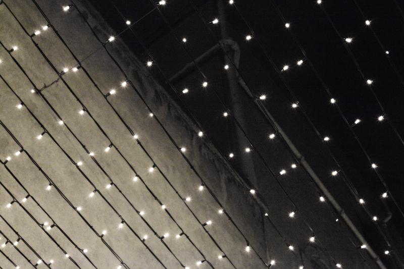 lights of the fairies